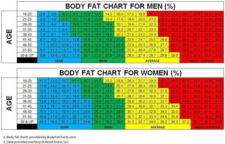 tinerețe în pierderea în greutate