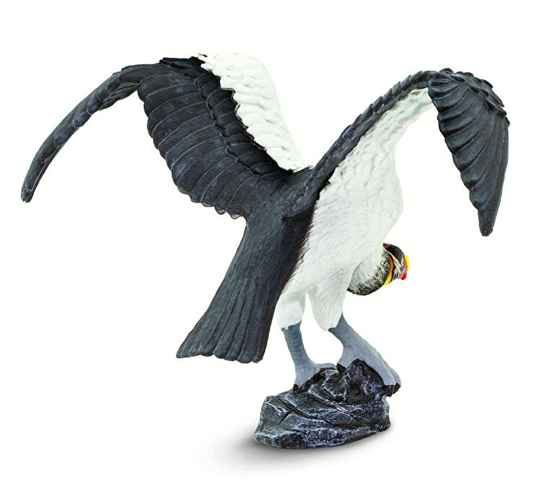 pierdere în greutate eagle idaho)