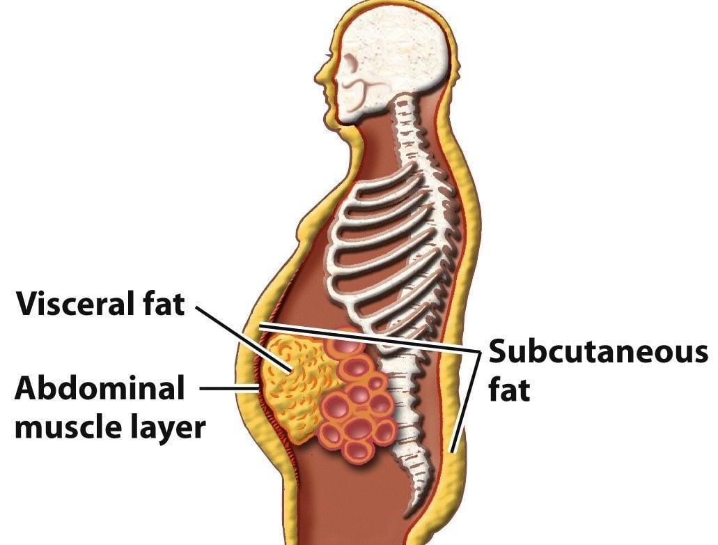 proces de pierdere în greutate sensa scădere în greutate clanton al