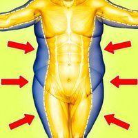 cum să elimini toată grăsimea din corp pierdere în greutate kaitlyn ly