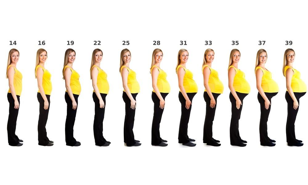 cum pot să-mi pierd greutatea în burtă Calea de pierdere în greutate bonnie