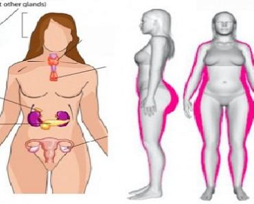 cum să elimini toată grăsimea din corp Femeia în vârstă de 54 de ani nu poate slăbi