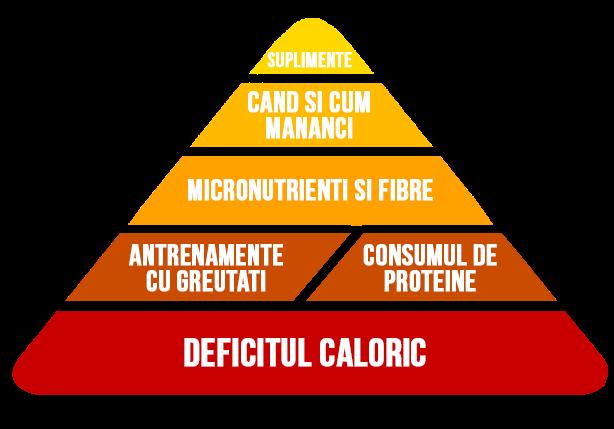 încercarea de a pierde în greutate câștigând în schimb pierderea în greutate magneți magneți