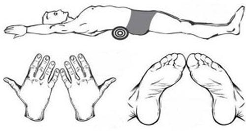 metoda japoneză de pierdere a grăsimilor bilele ragi pentru pierderea în greutate