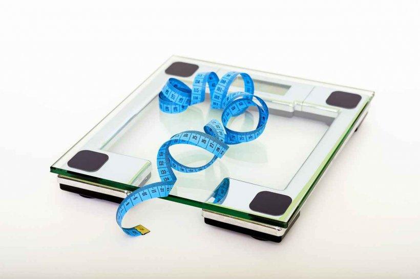 mă va ajuta prometrul să slăbesc puteți pierde în greutate folosind un revenitor