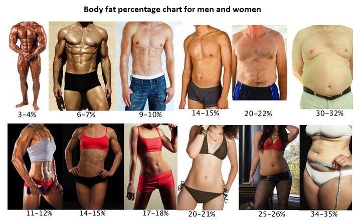 Pierderea in greutate VS pierderea grasimii corporale