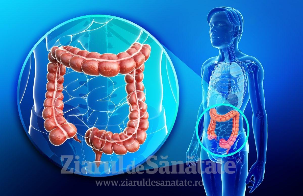 cum să slăbească intestinul